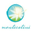 montecatinipartner