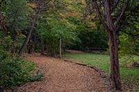 Path Pic