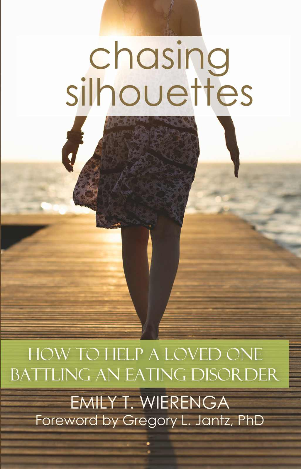 Book cover of Chasing Silhouettes