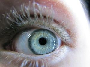 eye-249839_640