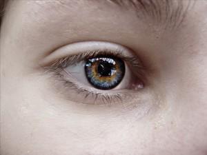 eye-277159_640