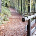railing-542510_640