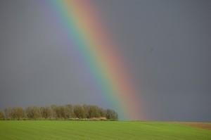 rainbow-110953_640