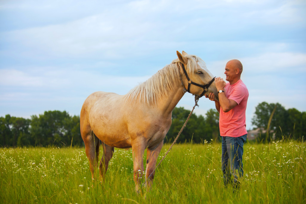 Man using Equine-Assisted Therapy