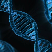 DNA Strand of Genetic Variation Impact on Eating Disorder Treatment