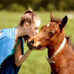 Animals and eating disorder recovery