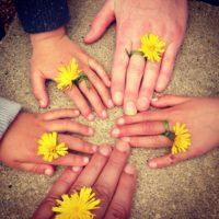 Parent Children Hands