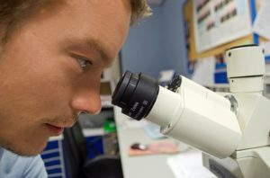 Scientist looking though a microscope