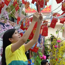Vietnam Lunar New Year
