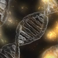 DNA Strand relating to Genetics and Anorexia