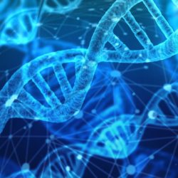 DNA Strand for Genetics in Eating Disorders