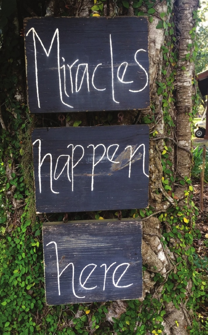 Miracles Happen Here photo