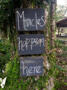 Refuge Miracles Happen Here