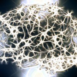Image of Full Brain Neurons with Maladaptive Schemas
