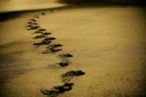 Footsteps in Sand of Eating Disorder Recovery Journey