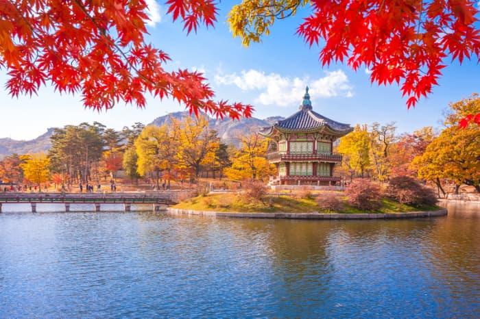Views in South Korea